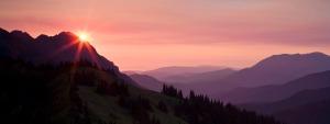 purple-mountain-majesty